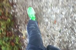 Herbstliche Joggingrunden in Grünwald