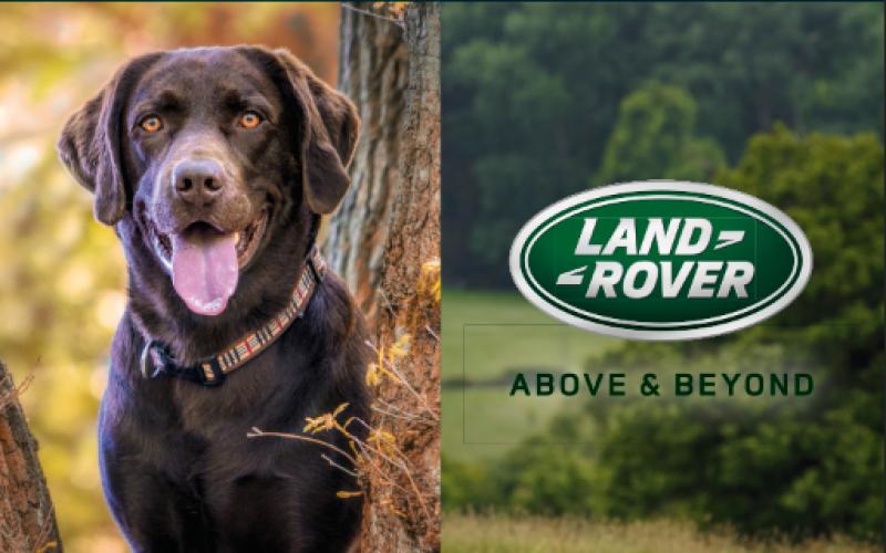 EINLADUNG – Kohler Automobile Happy Dog@Land Rover Village-Day